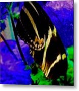 Winged Dream Metal Print