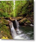 Hidden Falls At Rock Creek Metal Print