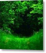 Hidden Meadow Metal Print