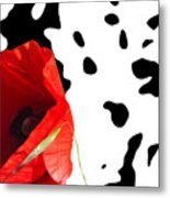 Hidden Poppy Metal Print