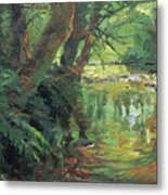 Hidden Stream Metal Print