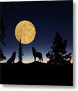 Hidden Wolves Metal Print by Shane Bechler