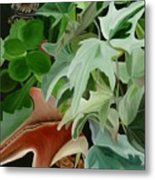 Hide'n Seek IIi Metal Print