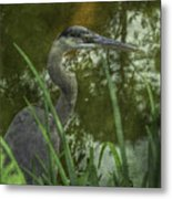 Hiding In The Grass Metal Print