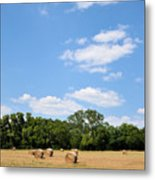 High As The Sky Metal Print by Jan Amiss Photography