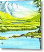 High Country Meadow Metal Print