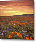 High Desert Sunset Serenade Metal Print