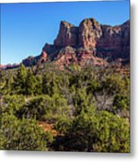 High Desert View Metal Print