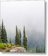 High Forest On Mt. Rainier Metal Print