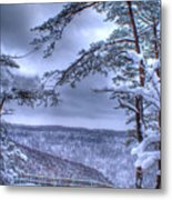 High Mountain Fence Metal Print