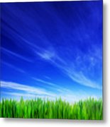 High Resolution Image Of Fresh Green Grass And Blue Sky Metal Print