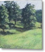 High Summer Pasture Metal Print
