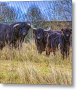 Highland Family Metal Print