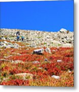 Hikers And Autumn Tundra On Mount Yale Colorado Metal Print