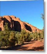Hiking In Red Rocks In Arizona Metal Print