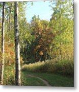 Hiking Trail In Autumn Sunset Metal Print