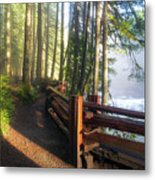 Hiking Trails At Lower Lewis River Trail Metal Print