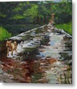 Hiking With Parker One Metal Print