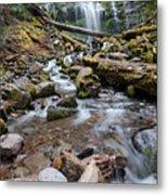 Hiking Zen Forests Metal Print