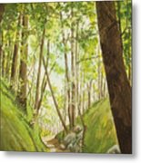 Hiling Path Metal Print by Charles Hetenyi