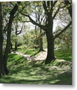 Hill 60 Cratered Landscape Metal Print