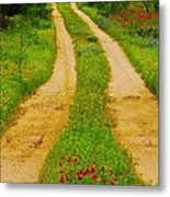 Hill Country Backroad Metal Print