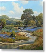 Hill Country Draw Metal Print