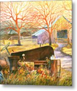 Hill Country Memories Metal Print