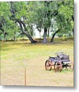 hill country Texas  Metal Print