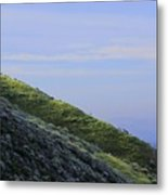 Hill In Riverside Metal Print