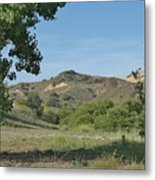 Hills In Peters Canyon Metal Print