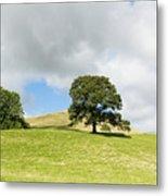 Hills Of Sedbergh Cumbria Metal Print