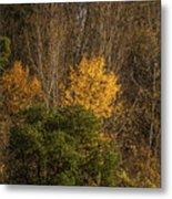 Hillside Autumn Metal Print