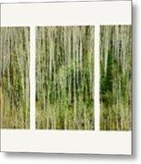 Hillside Forest Metal Print by Priska Wettstein