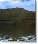 Hillside Reflection Metal Print