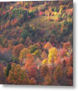 Hillside Rhythm Of Autumn Metal Print