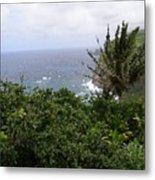 Hilo Coast Hawaii Metal Print