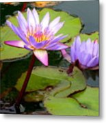 Hilo Water Lily 2 Metal Print