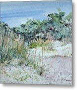 Hilton Head Beach Fauna Metal Print