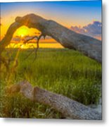 Hilton Head Island Sunrise Metal Print