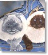 Himalayan Cats  Metal Print