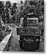 Himalayan Limo Bw Metal Print
