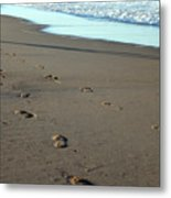 His Path Metal Print
