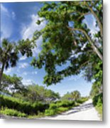 Historic Jungle Trail Vero Bch Fl IIi Metal Print