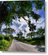 Historic Jungle Trail Vero Bch Fl V Metal Print