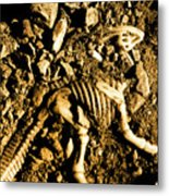 History Unearthed Metal Print