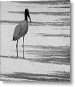 Hitch Hiker Metal Print