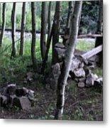 Hobo Camp In Animas Canyon Metal Print