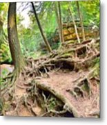 Hocking Hills Ohio Old Man's Gorge Trail Metal Print