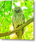 Owl  Watercolor Touch Metal Print